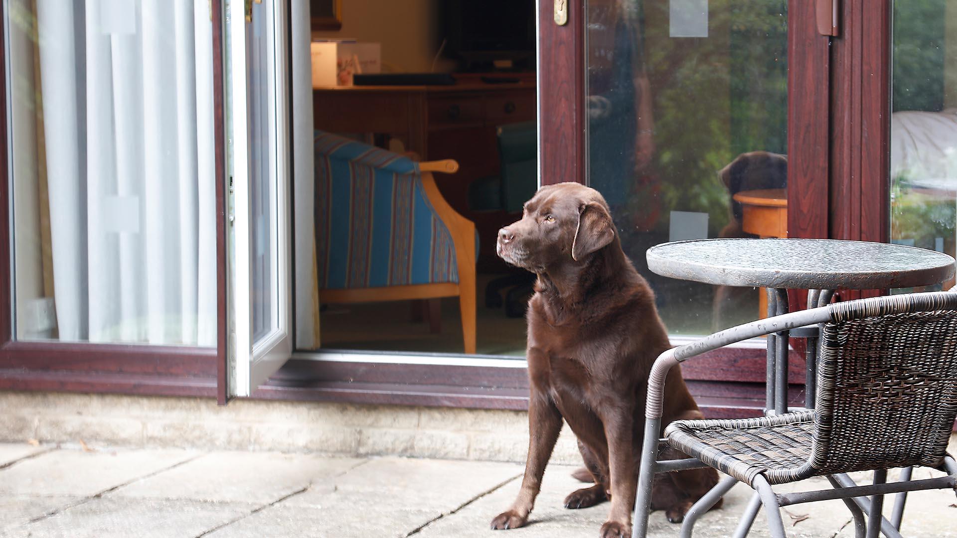 Hotels in Sheffield Mercure Sheffield Kenwood Hall Hotel and Spa Dog Friendly Sheffield